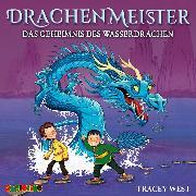 Cover-Bild zu Drachenmeister (3) (Audio Download) von West, Tracey