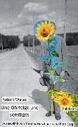 Cover-Bild zu Eine Ohrfeige und sonstiges von Walser, Robert