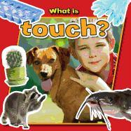 Cover-Bild zu Aloian, Molly: What is Touch?