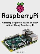 Cover-Bild zu Lyons, Irma: Raspberry Pi: Amazing Beginners Guide on How to Start Using Raspberry Pi (eBook)