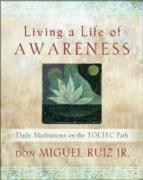 Cover-Bild zu Living a Life of Awareness von Ruiz, don Miguel