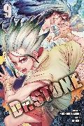 Cover-Bild zu Inagaki, Riichiro: Dr. STONE, Vol. 9