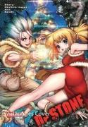 Cover-Bild zu BOICHI: Dr. Stone 7