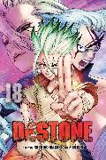 Cover-Bild zu Inagaki, Riichiro: Dr. STONE, Vol. 18