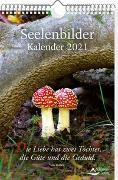 Cover-Bild zu Schirner, Markus: Seelenbilder-Kalender 2021
