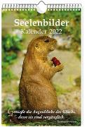 Cover-Bild zu Schirner, Markus: Seelenbilder-Kalender 2022