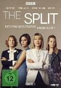 Cover-Bild zu The Split - Beziehungsstatus ungeklärt - Staffel 1