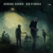 Cover-Bild zu Big Vicious