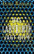 Cover-Bild zu Wekwerth, Rainer: Das Labyrinth jagt dich (eBook)