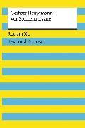 Cover-Bild zu Hauptmann, Gerhart: Vor Sonnenaufgang. Soziales Drama. Textausgabe mit Kommentar und Materialien (eBook)