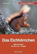 Cover-Bild zu Prinz, Johanna: Das Eichhörnchen - Kopiervorlagen für die 2. bis 4. Klasse