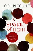 Cover-Bild zu Picoult, Jodi: A Spark of Light