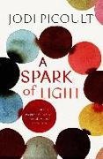 Cover-Bild zu Picoult, Jodi: Spark of Light (eBook)