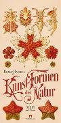 Cover-Bild zu Kunst-Formen der Natur - Ernst Haeckel Kalender 2022 von Haeckel, Ernst