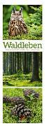 Cover-Bild zu Waldleben - Ein Spaziergang durch heimische Wälder, Triplet-Kalender 2022 von Ackermann Kunstverlag (Hrsg.)