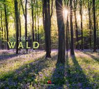 Cover-Bild zu Wald Kalender 2022 von Ackermann Kunstverlag (Hrsg.)