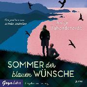 Cover-Bild zu Sommer der blauen Wünsche (Audio Download) von Babendererde, Antje