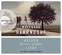 Cover-Bild zu Herrndorf, Wolfgang: Bilder deiner großen Liebe