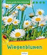 Cover-Bild zu Ernsten, Svenja: Meine große Naturbibliothek: Wiesenblumen