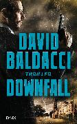 Cover-Bild zu Baldacci, David: Downfall (eBook)