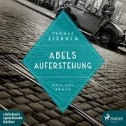 Cover-Bild zu Ziebula, Thomas: Abels Auferstehung