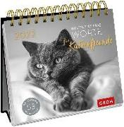Cover-Bild zu Inspirierende Worte für Katzenfreunde 2022