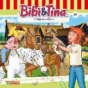 Cover-Bild zu Bornstädt, Matthias von: Bibi & Tina - Folge 89: Wildgänse-Alarm (Audio Download)