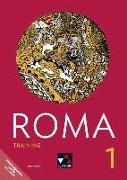 Cover-Bild zu Roma B 1 Training von Müller, Stefan (Hrsg.)