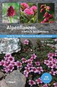 Cover-Bild zu Kammer, Peter M.: Alpenpflanzen einfach bestimmen