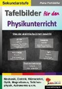 Cover-Bild zu Tafelbilder für den Physikunterricht von Pichlhöfer, Petra