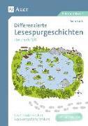 Cover-Bild zu Differenzierte Lesespurgeschichten Deutsch 5-6 von Rook, Sven