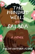 Cover-Bild zu Attah, Ayesha Harruna: The Hundred Wells of Salaga