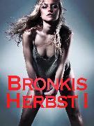 Cover-Bild zu Bronkis Herbst I (eBook) von Anonym