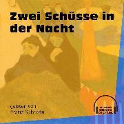 Cover-Bild zu Zwei Schüsse in der Nacht (Ungekürzt) (Audio Download) von Anonym