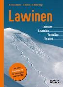 Cover-Bild zu Mersch, Jan: Lawinen