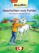 Cover-Bild zu Grimm, Sandra: Bildermaus - Geschichten vom Fohlen