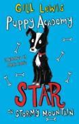 Cover-Bild zu Puppy Academy: Star on Stormy Mountain (eBook) von Lewis, Gill