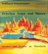 Cover-Bild zu Zwischen Feuer und Wasser