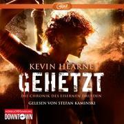 Cover-Bild zu Hearne, Kevin: Gehetzt (Die Chronik des Eisernen Druiden 1)