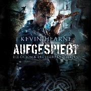 Cover-Bild zu Hearne, Kevin: Aufgespießt (Audio Download)