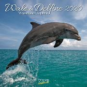 Cover-Bild zu Wale und Delfine 2020 von Korsch Verlag (Hrsg.)