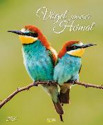Cover-Bild zu Vögel unserer Heimat 2020 von Korsch Verlag (Hrsg.)
