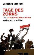 Cover-Bild zu Tage des Zorns (eBook) von Lüders, Michael