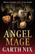 Cover-Bild zu Angel Mage von Nix, Garth