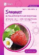 Cover-Bild zu Sommer im fächerübergreifenden Unterricht 3-4 von Schulze-Oechtering, Regina