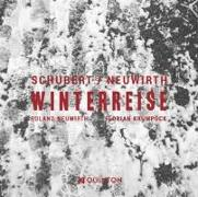 Cover-Bild zu Winterreise D.911 (auf wienerische Texte von Roland Neuwirth)