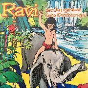 Cover-Bild zu Ravi, Der Junge aus dem Dschungel (Audio Download) von Bohlmann, Chris