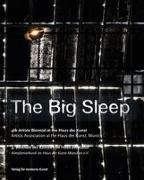 Cover-Bild zu THE BIG SLEEP von Oßwald-Hoffmann, Cornelia