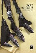 Cover-Bild zu Kakizaki, Masasumi: Dark Hideout