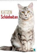Cover-Bild zu Calvendo, K. A.: Katzen-Schönheiten (Wandkalender 2021 DIN A2 hoch)